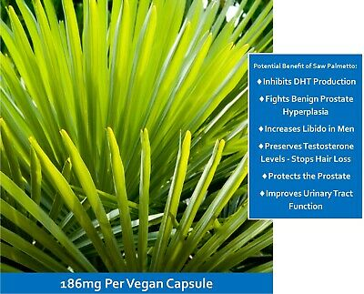 AU34.95 • Buy Prostate Relief - Saw Palmetto Complex - A Natural Approach - Made In Australia