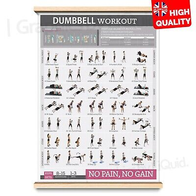 Dumbbell Exercises Workout For Gaining Muscles Poster | A4 A3 A2 A1 | • 7.99£