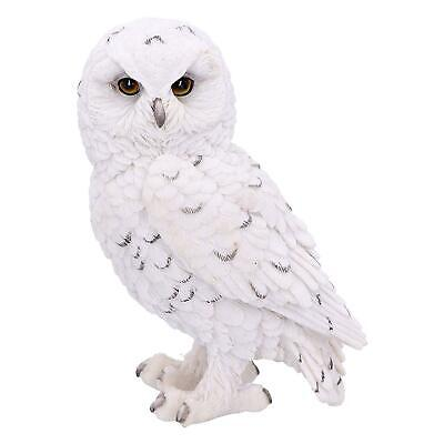 Snowy Owl Sculpture Statue Ideal Gift Owls Lovers Ornament • 14.99£