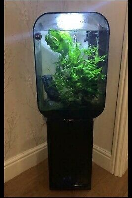 Biorb Life 60 - With Stand + Accessories - Modified For Sand + Fluval Filter • 200£