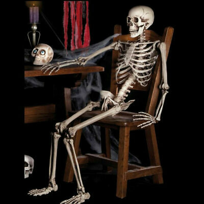 $7.99 • Buy US Halloween Props Life Size Skeleton Hanging Prop Haunted House Decor 38cm Kids