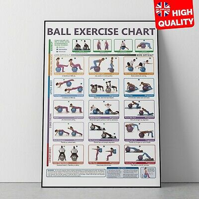 Exercise Gym Ball Fitness Workout Poster Art Print | A4 A3 A2 A1 | • 2.99£
