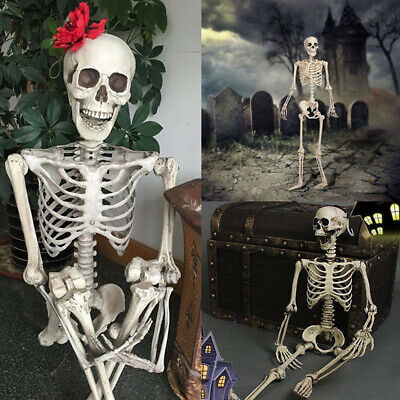 $8.39 • Buy New Poseable Full Life Size Party Prop Decoration Human Skeleton Halloween 16 In