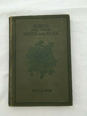£12.99 • Buy Birds Their Nests & Eggs Found In & Near Grt Towns Vintage Book By Dr.Vos M82