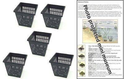 5 X 11cm Square Plastic Aquatic Pots Baskets For Water Plants And Pond & Guide • 7.95£
