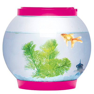 Sentik® 5 Litre Glass Fish Bowl LED Light Aquarium Goldfish Betta Tank Pink • 22.95£