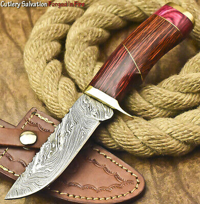 $13.49 • Buy Cutlery Salvation Custom Hand Forged Damascus Steel Hunting Knife | Hard Wood