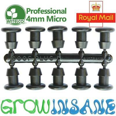 Antelco 4mm Micro Irrigation End Plug Goof Stopper For 4/6mm Pipe Fits Hozelock • 2.67£