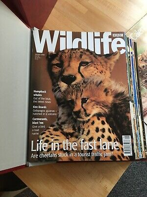 £8 • Buy BBC Wildlife Magazines - Various Years Available 1986-2007