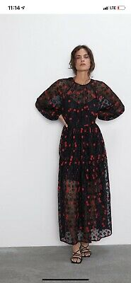 $39 • Buy Zara Embroidered Lace Floral Dress, NWT, Size L, Orig Price $89