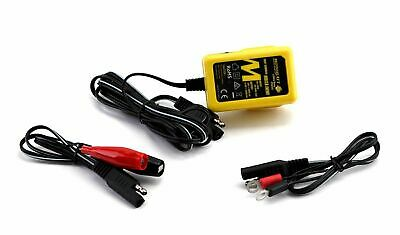 AU59.99 • Buy Motobatt Little Boy 6V/12V 1.0Ah Battery Charger For Quad Bike/ATV/UTV Etc