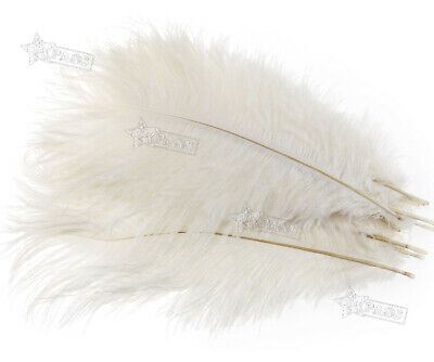 $7.87 • Buy 10 Pack 25-30cm Ostrich Feathers Plume Craft Centerpiece Wedding Party Decor