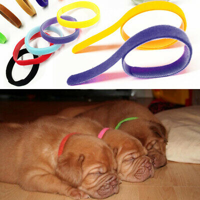 UK New 12 Different Colours Dog Puppy Kitten Newborn Welping ID Bands Collar Set • 3.89£