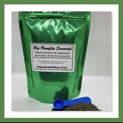 Plaque Remover Dogs Big Benefits Seaweed 500g Health Benefits Certified Organic • 19.95£