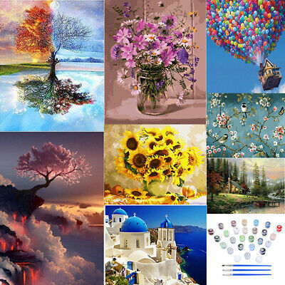 DIY Oil Painting Kit Paint By Numbers Acrylic Adult Children Beginners Frameless • 7.99£