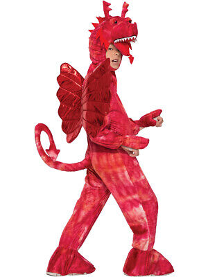 £30.27 • Buy Child Boy's Fire Breathing Flying Chinese Dragon Wing Animal Costume Large 12-14