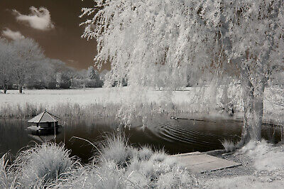 Nikon D3000 Infrared Converted Camera 720nm Standard Infrared Converted 720 Nm • 165£