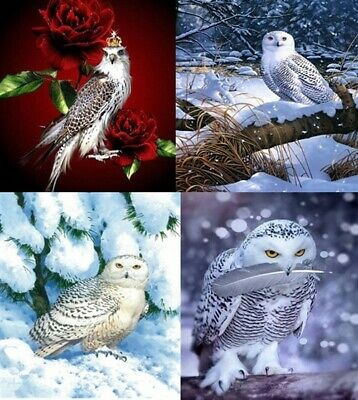 AU17.95 • Buy Full Square Drill 5D DIY Owl Diamond Painting Cross Stitch Home Decor