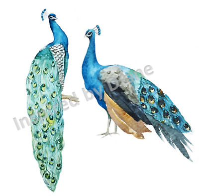 £5.99 • Buy Transparent Self-adhesive Sticker From Painted Wall, Peacock, Birds, Bird 101