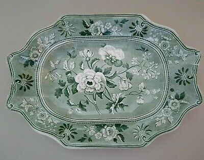 C&G Spode Botanical Pearlware Transfer Dish With RARE BACKSTAMP And Provenance • 120£