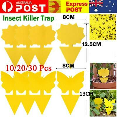 AU9.59 • Buy 10/20/30Pcs Dual Sided Sticky Trap Insect Killer Whitefly Thrip Fruit Fly Gnat