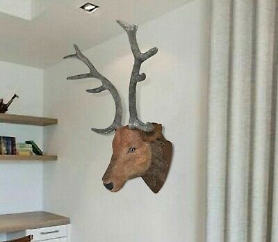 Wall Mounted Deer Head Stag Head Wall Hangings Wall Decoration Home Decor • 69£