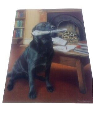£95 • Buy Evening Delivery By Nigel Hemming Black Labrador Retriever Limited Edition
