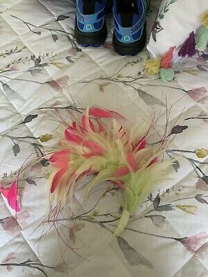 Pink And Green Feathers Fascinator • 5£