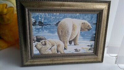 Limited Edition Stephen Gayford Polar Bear Print, Signed With Frame 842/875 • 14.95£