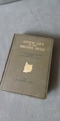 ANIMAL LIFE OF THE BRITISH ISLES, Step, Edward. Illustrated By W.J. Stokoe.,  • 4£