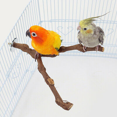 Bird Parrot Natural Wooden Perch Stand Fork Rack Branch Budgie Cage Play Toys UK • 5.99£