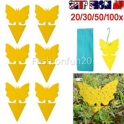 AU20.50 • Buy UP TO 100PCS Dual Sided Sticky Trap Insect Killer Whitefly Thrip Fruit Fly Gnat
