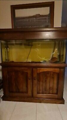 AU600 • Buy 4 Foot Fish Tank With Pump, Decorations And Accessories