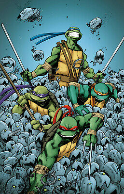 $14.50 • Buy TMNT - Turtles In Time Poster  -22in X 32in  - FREE SHIPPING
