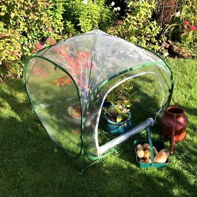 PopUp Greenhouse PVC Outdoor Garden Tent Plant Grow House Mini PolyHouse 1x0.75m • 45.99£