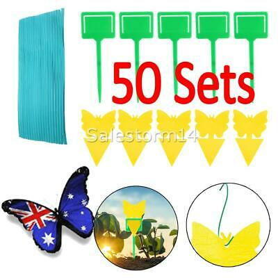 AU21.19 • Buy 50Pcs Dual Sided Sticky Trap Insect Killer Whitefly Thrip Fruit Fly Gnat