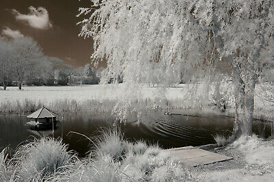 Nikon D3000 Infrared Converted Camera 720nm Standard Infrared Converted 720 Nm • 179£