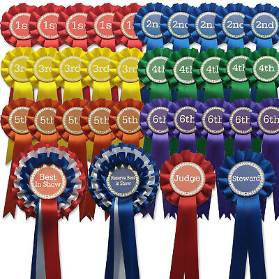 £40.99 • Buy 10 Sets 1st-6th Rosettes Dog/Horse Show Event Schools Award FREE POSTAGE