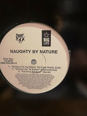 Naughty By Nature - Hip Hop Hooray  Rare UK Promo 12  Vinyl 1992 Rap Classic • 4.99£