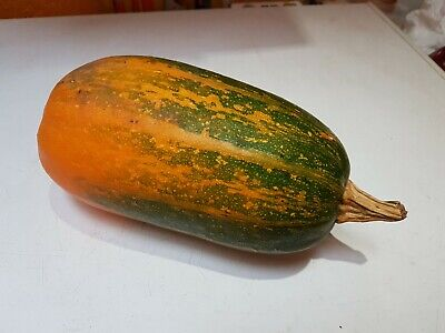 £1.50 • Buy Marrow/Squash/Courgette Seeds