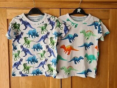 2x BOYS DINOSAUR TOPS / T SHIRT FROM BLUE ZOO. AGE 3-4 YEARS • 7.99£