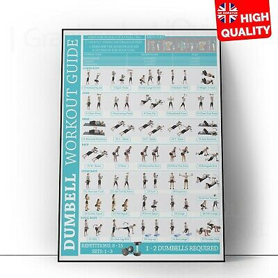 £2.99 • Buy Dumbbell Exercises For Gaining Muscles Workout Poster | A5 A4 A3 A2 A1 |