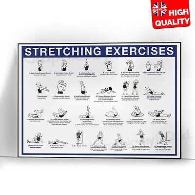 £4.99 • Buy Streching Exercises Gaining Muscles Workout Poster Print | A5 A4 A3 A2 A1 |