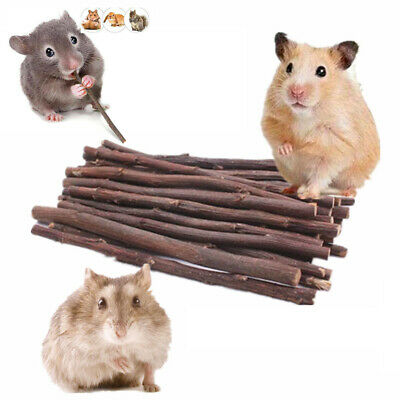 £2.99 • Buy 50g Wood Chew Sticks Twigs For Small Pets Rabbit Hamster Guinea Pig Parrot Toys