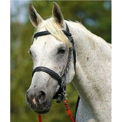 £89.95 • Buy Zilco Synthetic Sidepull Bitless Bridle