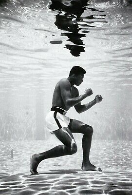 £4.99 • Buy Muhammad Ali Underwater Posing Boxing Sport Print Poster Wall Art Picture A4 +