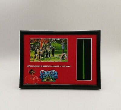 £22.99 • Buy Charlie And The Chocolate Factory Wonka Grass Used Prop Coa Depp