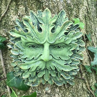 £19.95 • Buy Green Man Wall Plaque Boxed Pagan Wiccan