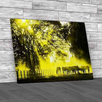 £12.95 • Buy Golden Light In The Stables Yellow Canvas Print Large Picture Wall Art