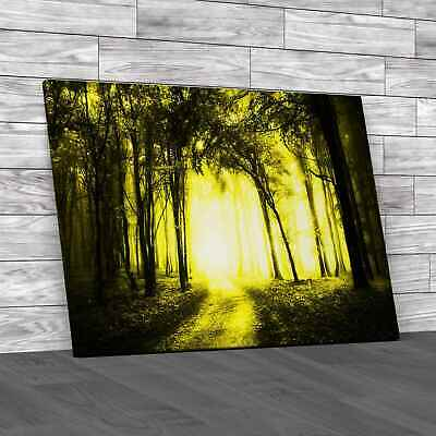 £12.95 • Buy Road Through A Golden Forest Yellow Canvas Print Large Picture Wall Art